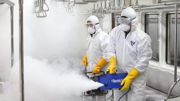 Vi rút Zika có thể xuyên qua nhau thai sản phụ
