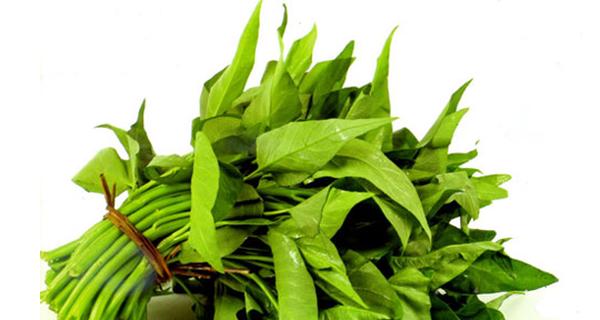 Không cần tìm đâu xa, rau muống chúng ta ăn hàng ngày chính là vị thuốc giải nhiều chất độc