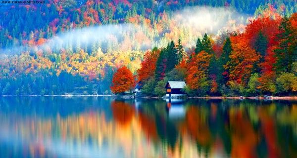 10 bức ảnh chông chênh nhưng đẹp đến nín thở