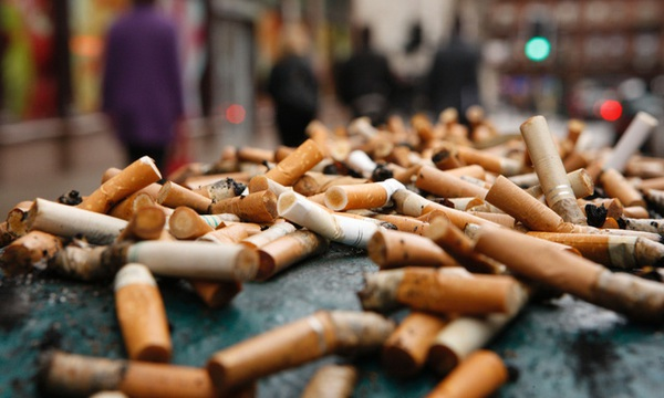 Cách giải quyết hàng nghìn tỷ đầu lọc thuốc lá không ai nghĩ đến của các nhà khoa học Úc