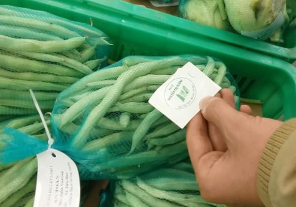 """Sự thật nhức nhối về """"rau an toàn"""" cho siêu thị"""