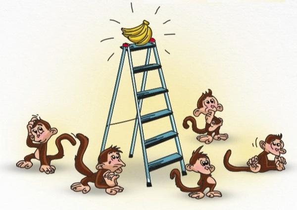 5 con khỉ và 1 nải chuối: Bài học về những nhà lãnh đạo 'vùi dập' và nhân viên 'mù quáng'