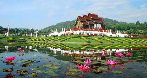 Tìm đến thiên đường Thái Lan khi tuổi đã xế chiều, nhiều người Nhật chết trong tuyệt vọng