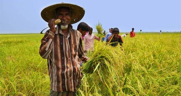 Người tiêu dùng Việt cho rằng bị xâm hại quyền lợi thì phải kêu cứu ở... Hội nông dân?