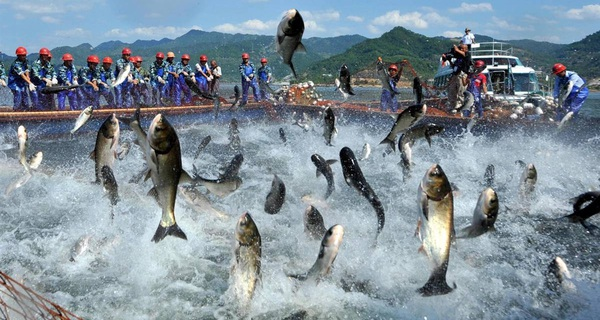 Đến 2020, kinh tế biển góp hơn 50% GDP, sao phải đánh đổi lấy ngành công nghiệp thế giới đã dư thừa?