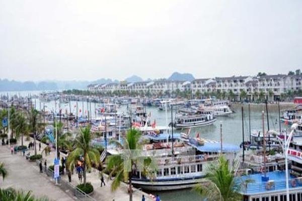 Quảng Ninh: Tập đoàn Tuần Châu thu phí qua cảng đối với khách du lịch là bất hợp lý?