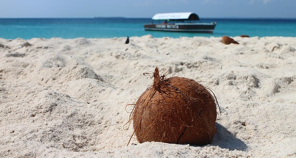 Bài học kinh doanh từ anh bán dừa: Những ai đã, đang và sẽ làm sales nhất định phải biết!