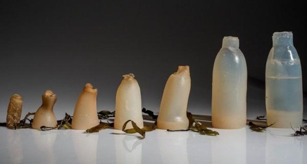 Thạch chúng ta ăn hàng ngày có thể trở thành loại vật liệu mới, thay thế cho nhựa trong tương lai