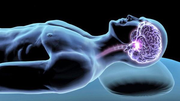 4 bộ phận giới khoa học mới khám phá trong cơ thể người