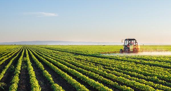 6 tháng đầu năm: Ngành nông nghiệp 'gặt quả ngọt' tăng trưởng 2,65%, gần gấp đôi cả năm 2016