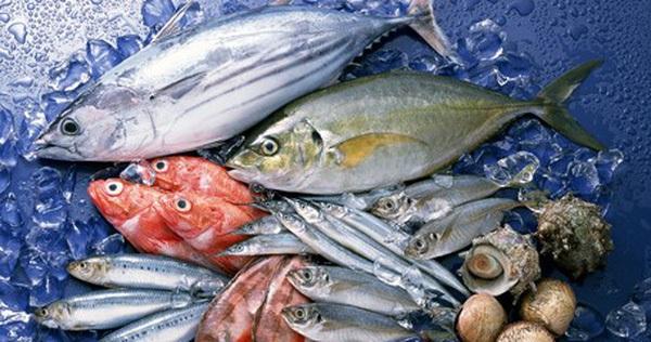 Mẹo phân biệt cá biển tươi đông lạnh và cá chết