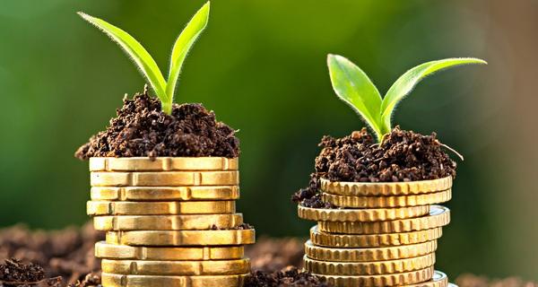 5 thứ đầu tư quan trọng nhất cả đời, bỏ quên điều thứ 3 thì những thứ khác vô nghĩa