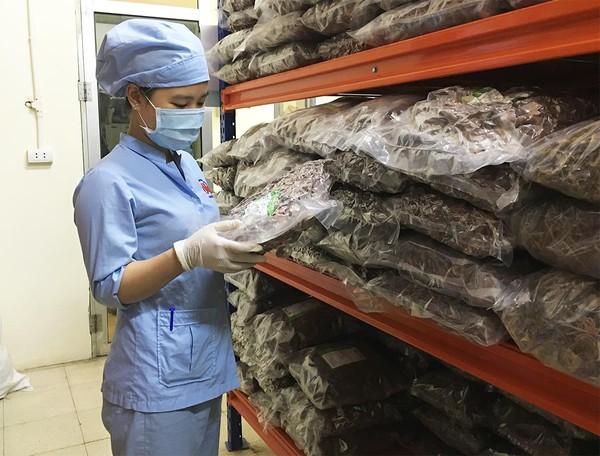 Sản xuất công nghiệp - yếu tố then chốt trong chuỗi giá trị phát triển dược liệu Việt Nam