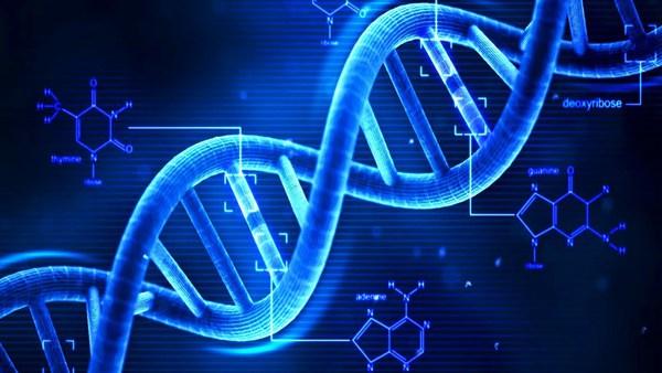 DNA nhân tạo mở màn kỷ nguyên mới của con người