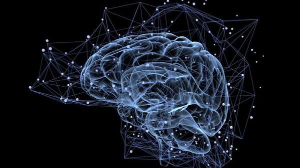 Hiểu động lực con người dưới góc độ khoa học và cách rèn luyện bộ não để thay đổi cuộc sống