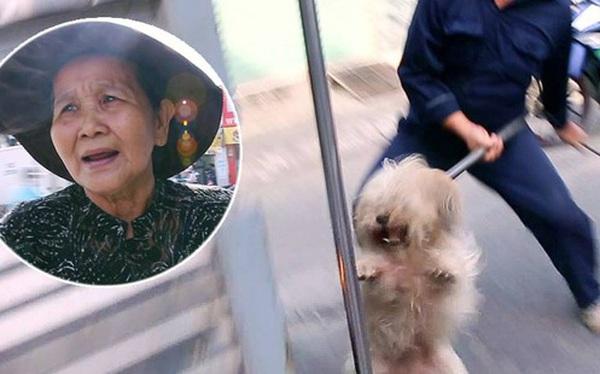 """Chó cưng bị Đội săn bắt """"tóm"""", cụ bà hớt hải: """"Nó đi chợ với tôi, đang nằm trên vỉa hè chờ tôi về cùng thì bị bắt"""""""