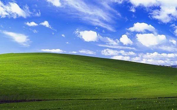 Bạn có biết bức ảnh nền huyền thoại của Windows XP giá bao nhiêu không?
