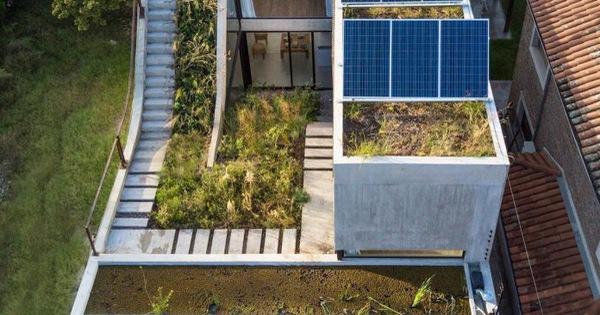 Thiết kế ấn tượng các khu vườn trên mái tạo nên kiến trúc của ngôi nhà rất độc đáo