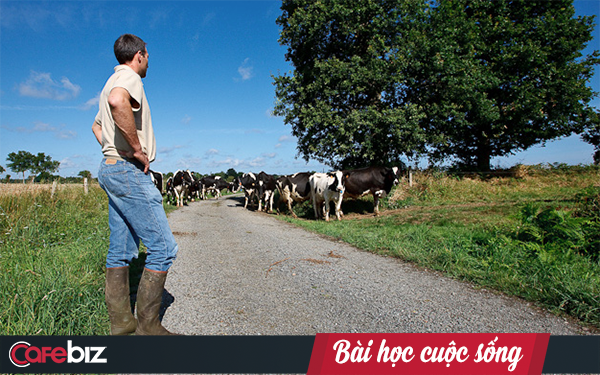 Chỉ cần cử 2 người con đi mua bò về nuôi, ông bố này đã biết được ai sẽ thành ông chủ, kẻ suốt đời chỉ đi làm thuê