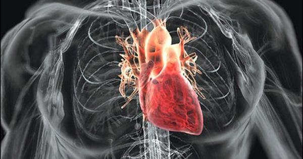 """10 """"thực phẩm vàng"""" tốt nhất cho sức khỏe tim mạch bạn nên ăn ngay từ giờ"""