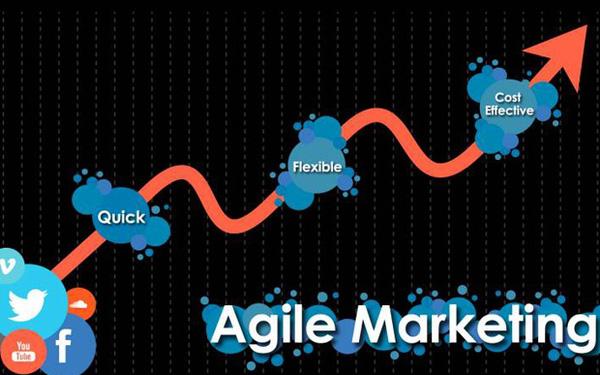 7 lý do startup cần nắm bắt agile marketing