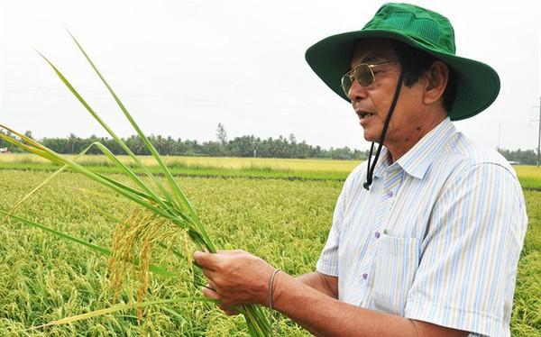 """Người tạo ra giống lúa ngon top 3 thế giới Hồ Quang Cua: """"Chúng tôi là những người mở đường"""""""