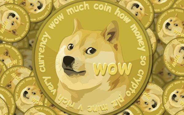 Tâm trạng người 'chơi' tiền ảo trước thềm Tết nguyên đán: Người thì lo lắng, người thì bàn tán xem 'coin con chó' có phất trong năm mới