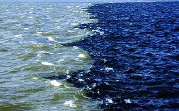 Người ta vừa phát hiện một vùng nước chết rộng hàng ngàn kilomet ở biển Arap
