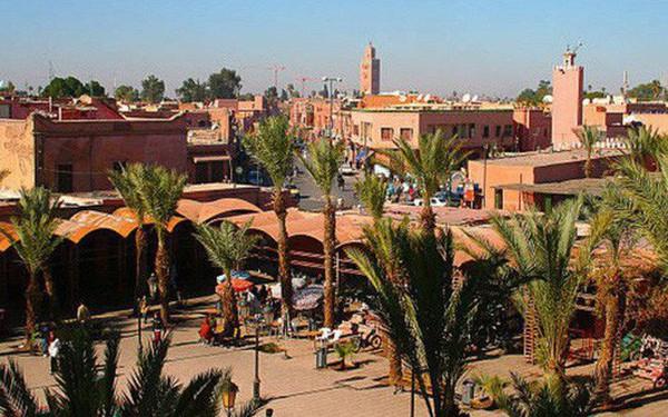 Khuyến cáo doanh nghiệp Việt không giao dịch với một công ty tại Maroc
