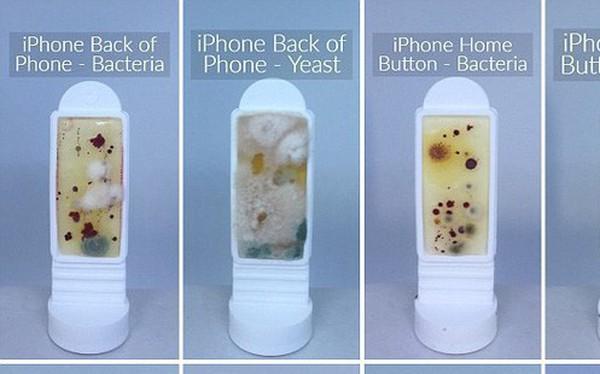 Hình ảnh kinh hoàng về độ bẩn của những chiếc điện thoại: Nhiều vi khuẩn gấp 10 lần bồn cầu
