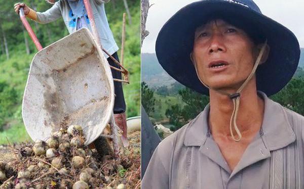 """Nông dân khốn khổ vì nông sản Trung Quốc nhái hàng Đà Lạt: """"3 tháng trồng khoai không bán được đồng nào, chỉ biết khóc..."""""""