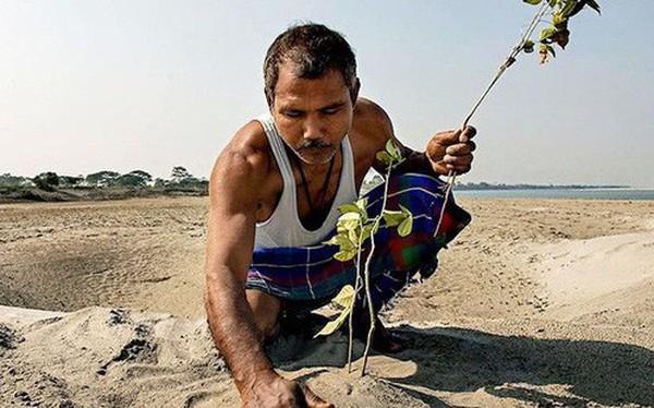 Mỗi ngày trồng 1 cái cây từ 40 năm trước, người đàn ông biến hòn đảo suýt bị nhấn chìm thành thiên đường nhiệt đới