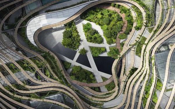 Khu rừng mới giữa đô thị ở Singapore mở ra tương lai cho những tòa nhà xanh khắp thế giới