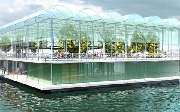 Trang trại nổi đầu tiên trên thế giới đang thu hút sự chú ý tại Rotterdam