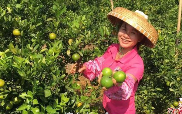 Bán 1,5 triệu kg nông sản qua các nền tảng video, cô nông dân 37 tuổi giúp vùng quê Trung Quốc thoát nghèo chỉ sau 1 năm