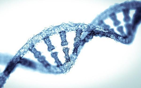 """Các nhà khoa học phát hiện 52 """"gen thông minh"""" quyết định 5% trí tuệ của bạn"""