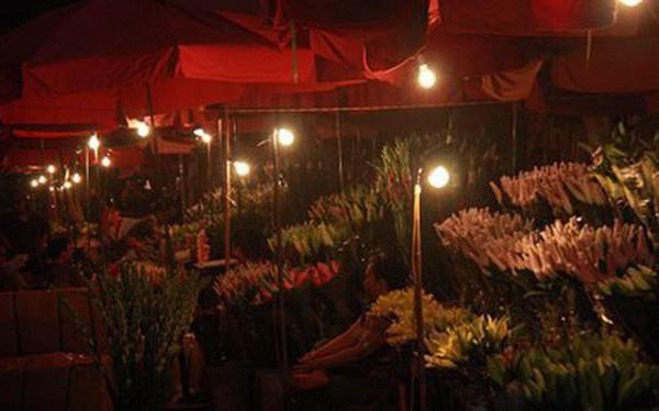 Sếp EVN đề nghị cấm sản xuất, tiêu thụ bóng đèn tròn