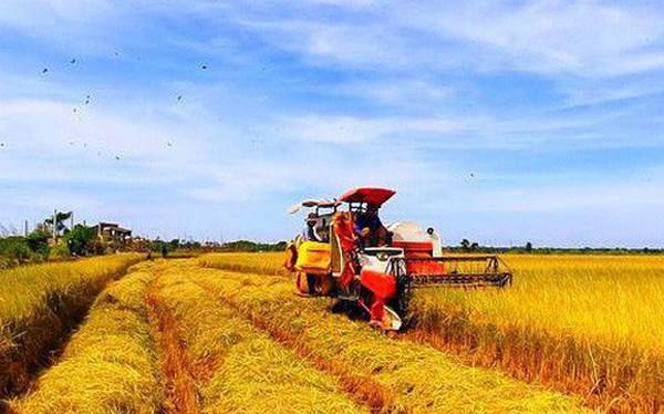Nhìn lại 10 năm thực hiện tam nông và mục tiêu ngành nông nghiệp Việt Nam sẽ vào top 15 thế giới