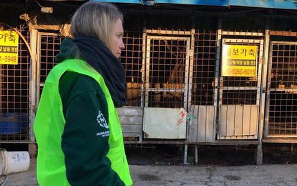 Đóng cửa cơ sở giết mổ chó lớn nhất Hàn Quốc