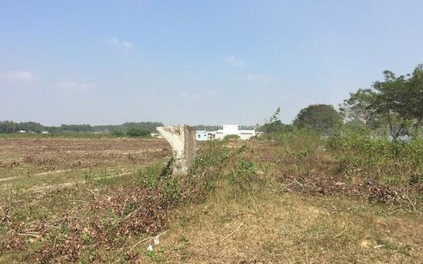 """Đô thị """"ma"""" Nhơn Trạch, Đồng Nai: La liệt dự án bỏ hoang, chung cư không người ở"""