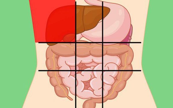 """Nhờ """"bản đồ bụng"""" này mà bạn sẽ biết các cơn đau ở mỗi vị trí trên bụng là do nguyên nhân nào gây ra"""