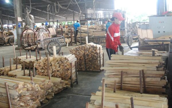 Ngành gỗ một năm nhìn lại
