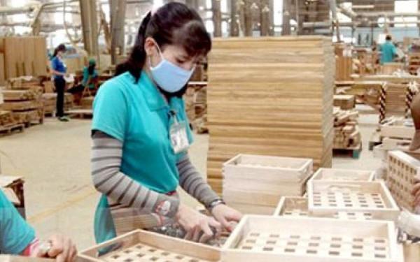 CÆ¡ sở dữ liệu gỗ hợp pháp giúp ích gì cho thị trường xuất khẩu gỗ?