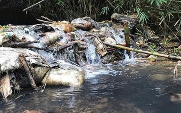 Bắt 2 đối tượng liên quan đến việc đổ dầu gây ô nhiễm nguồn nước sông Đà