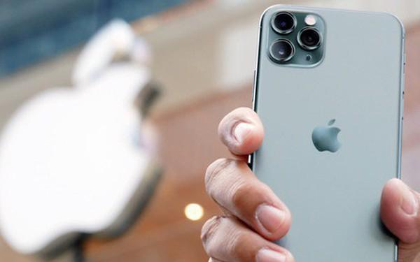 """Với iPhone 11, Apple lần đầu tiên """"cắn răng cắt máu"""", giảm lợi nhuận để lấy thị phần"""