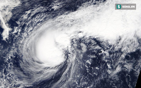 Bão số 6 đạt đỉnh: 'Trận bão mạnh nhất, diễn biến phức tạp nhất năm 2019'