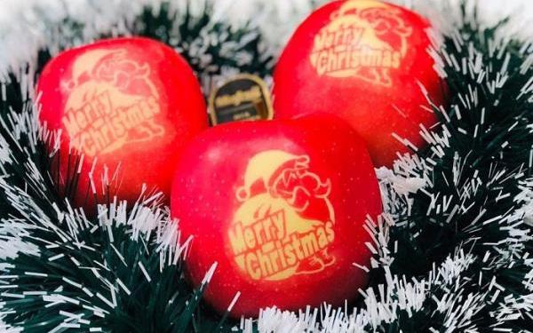 Gần nửa triệu đồng một quả táo phiên bản 'Merry Christmas'