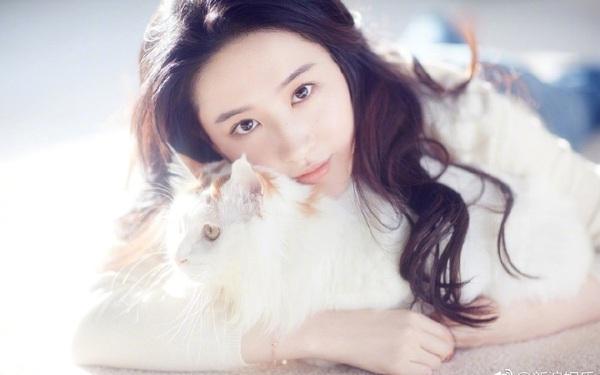 Trung Quốc: Thà nuôi chó mèo còn hơn kết hôn