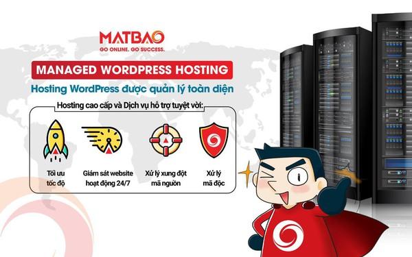Mắt Bão đi đầu cung cấp dịch vụ Managed WordPress Hosting – Giải pháp tiết kiệm toàn diện cho doanh nghiệp