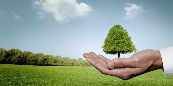 Phát triển doanh nghiệp không quên bài toán môi trường